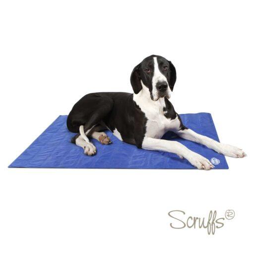 Køle Måtte til hunde fra Arthurs Barf i Hørsholm Scruffs model.